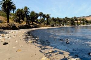 Oil Spill Santa Barbara 2015